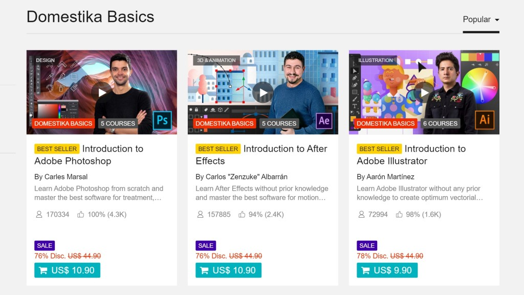 Domestika basics course bundles